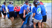 Ally Greco, SMC staff member, helps to release a manatee.